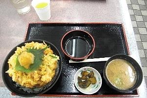 牧野原SAかき揚げ丼.jpg